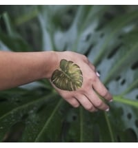 "Temporäre Tattoos ""Philodendron Monstera"" - Pair"